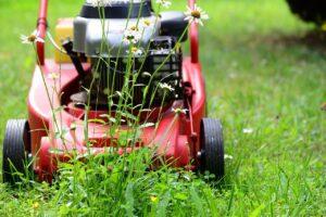 Garten pflegen Rasen mähen Klissenbauer