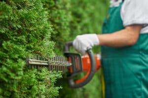 Heckenschnitt Gartenpflege Klissenbauer