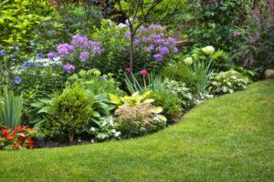 Blumenbeet Staudenbeet Gartengestaltung
